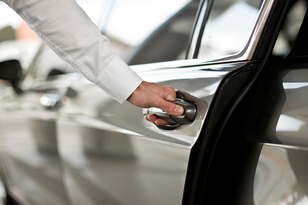 Opening Luxury Car Door